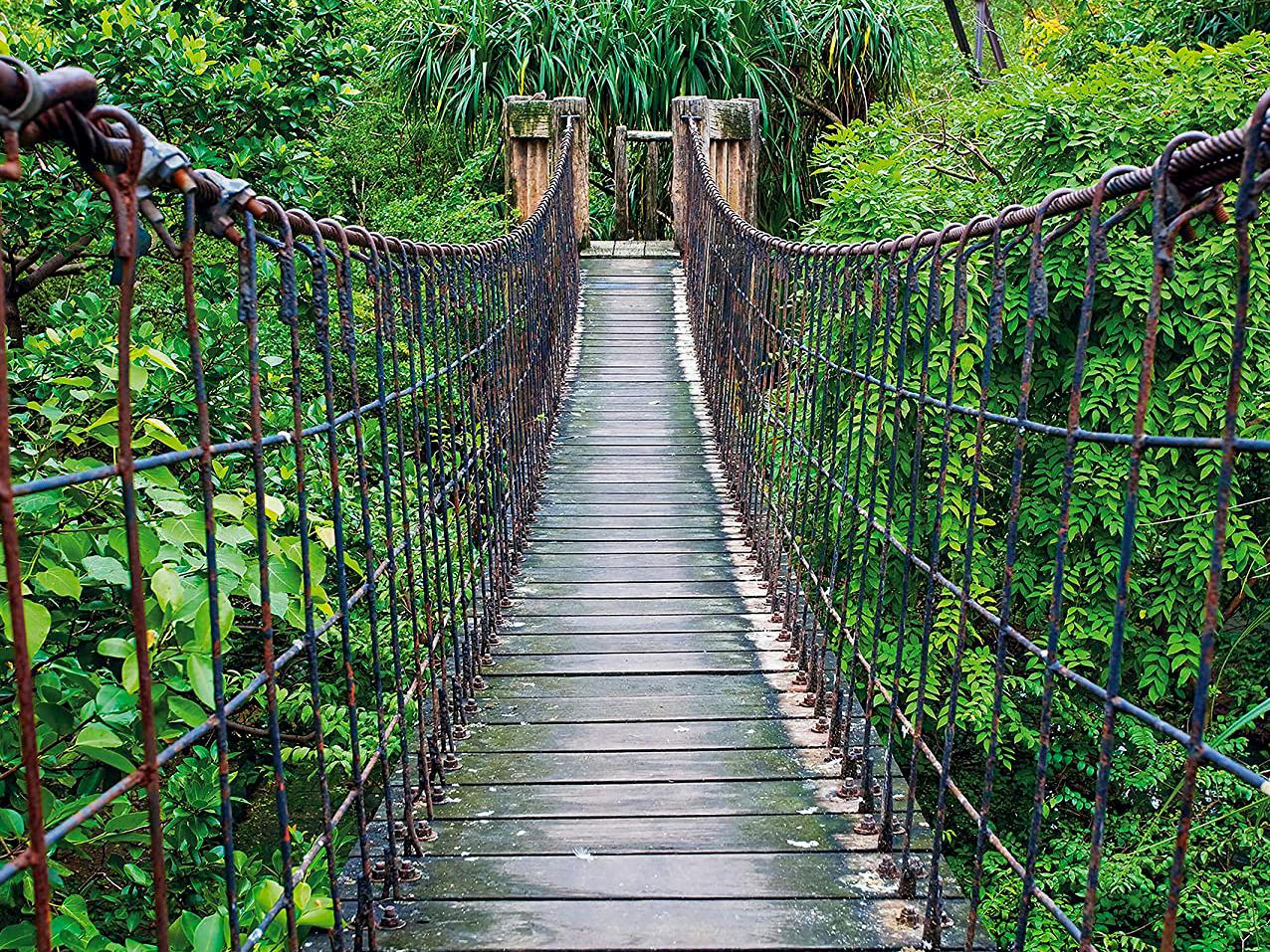 Elin Babcock: Bear Creek Bridge